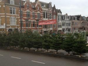 Kerstbomenverkoop Haarlem